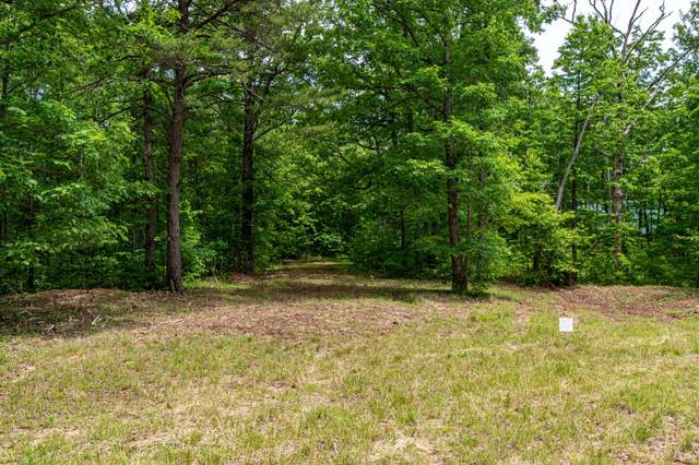 Lot 108 Gray Rock Vw, Pikeville, TN 37367 (MLS #1337690) :: EXIT Realty Scenic Group