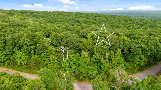 0 Forest Knoll Rd, Dunlap, TN 37327 (MLS #1337734) :: The Weathers Team