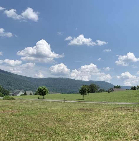 14 Scenic Hollow Dr, Dunlap, TN 37327 (MLS #1338105) :: 7 Bridges Group