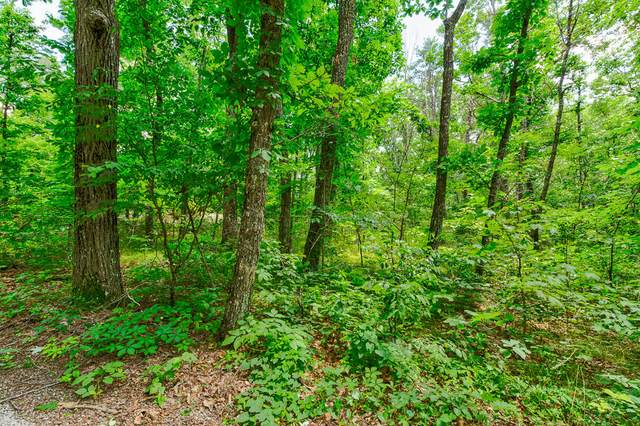 0 Walden View Rd, Signal Mountain, TN 37377 (MLS #1338171) :: The Mark Hite Team