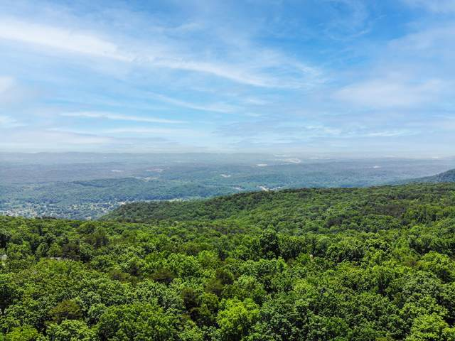 7315 Falcon Bluff Dr, Signal Mountain, TN 37377 (MLS #1338185) :: The Mark Hite Team