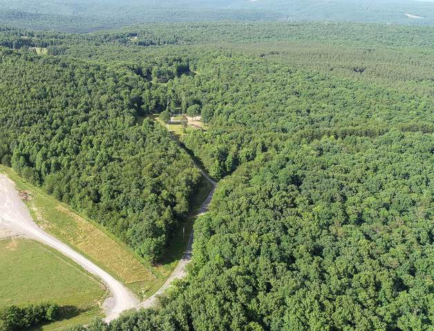 1755 Kelly Creek Rd, Whitwell, TN 37397 (MLS #1338319) :: 7 Bridges Group