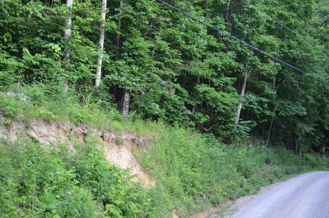 Tbd Dunlukin Dr, Spring City, TN 37381 (MLS #1338472) :: The Weathers Team