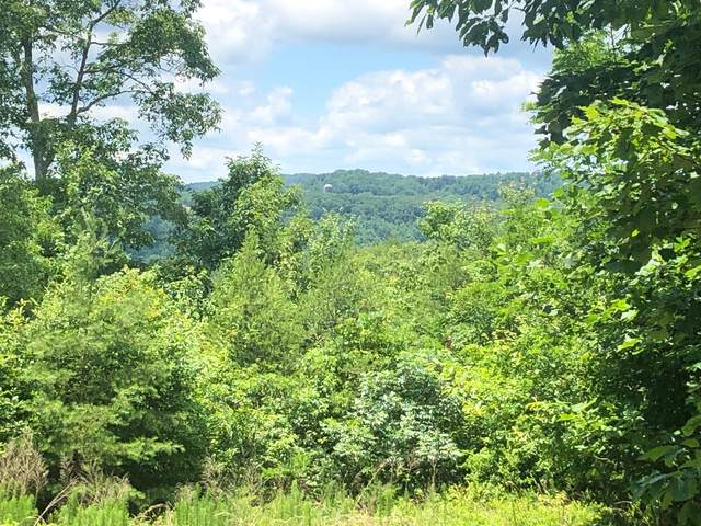 0 Hobbstown Rd, Dunlap, TN 37327 (MLS #1338559) :: Keller Williams Greater Downtown Realty | Barry and Diane Evans - The Evans Group