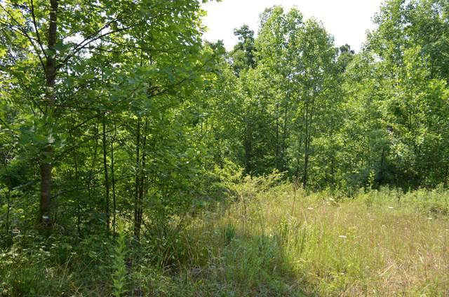 753 Chestnut Ridge Rd, Spring City, TN 37381 (MLS #1338913) :: Austin Sizemore Team