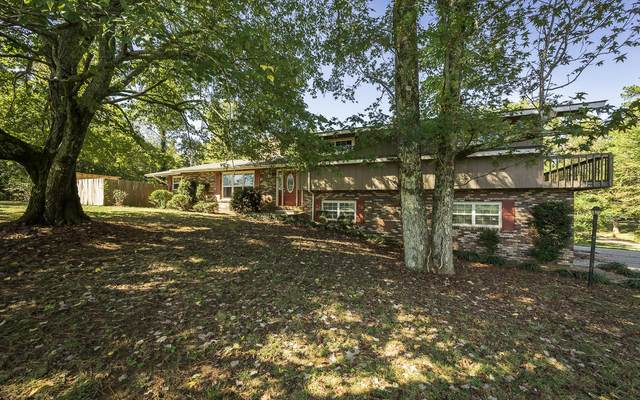 307 Terry Ln, Tunnel Hill, GA 30755 (MLS #1339784) :: Keller Williams Greater Downtown Realty | Barry and Diane Evans - The Evans Group