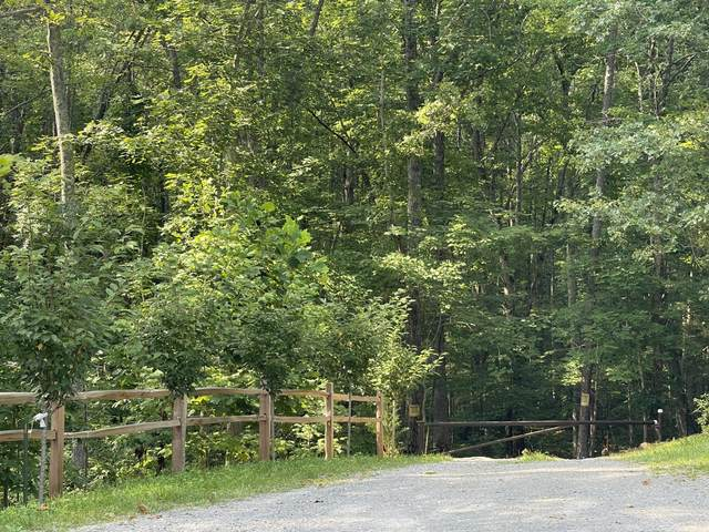 00 Big Springs Gap Rd, Pikeville, TN 37367 (MLS #1340163) :: Keller Williams Greater Downtown Realty | Barry and Diane Evans - The Evans Group