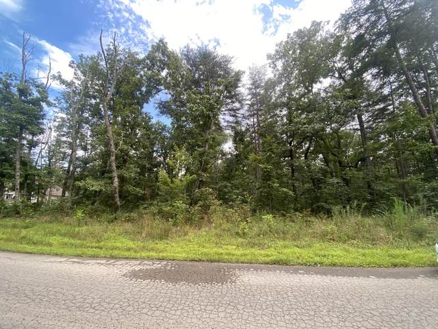 00 Hixson Springs Rd, Signal Mountain, TN 37377 (MLS #1341513) :: Keller Williams Realty