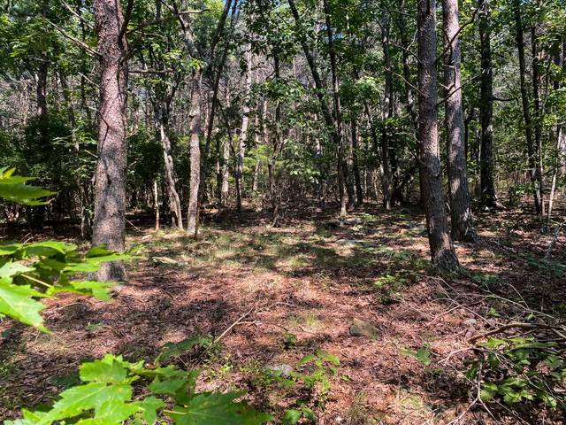 0 Old Rocky Tr I-3, Rising Fawn, GA 30738 (MLS #1343067) :: EXIT Realty Scenic Group