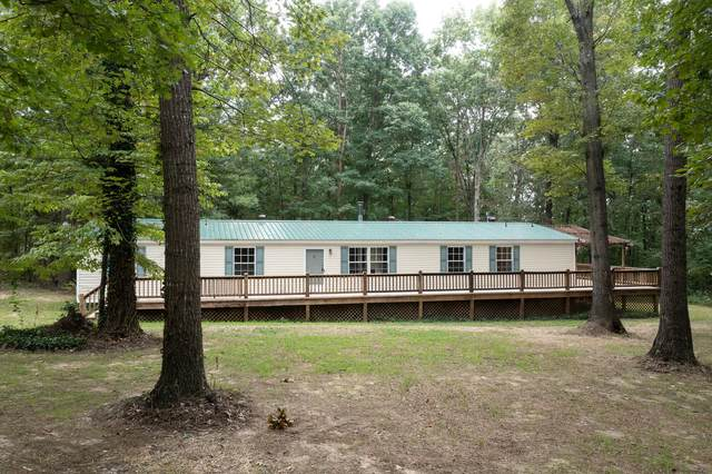 300 County Road 132, Bryant, AL 35958 (MLS #1343592) :: EXIT Realty Scenic Group