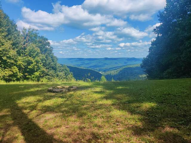 16.9 S Pittsburg Mountain Rd, South Pittsburg, TN 37380 (MLS #1343760) :: The Hollis Group