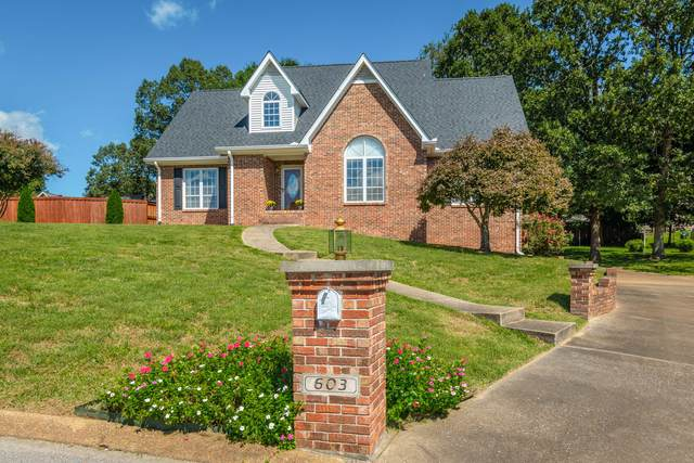 603 Pine Brow Tr, Chattanooga, TN 37421 (MLS #1343790) :: The Weathers Team
