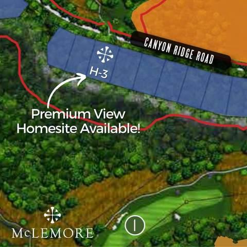 0 Canyon Ridge Rd H-3, Rising Fawn, GA 30738 (MLS #1343809) :: Keller Williams Realty