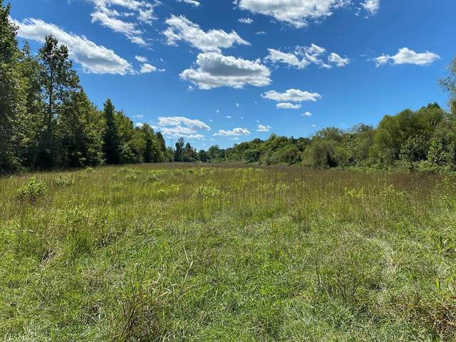 15.1 Acres Rhea County Highway, Spring City, TN 37381 (MLS #1343825) :: Keller Williams Greater Downtown Realty | Barry and Diane Evans - The Evans Group
