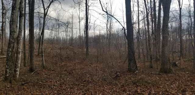 Lot 9 Sr 56 Lot 9, Tracy City, TN 37387 (MLS #1344220) :: Keller Williams Greater Downtown Realty | Barry and Diane Evans - The Evans Group