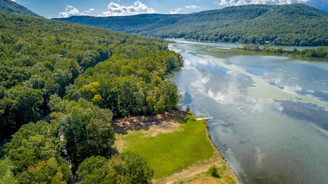 0 Mullins Cove Rd, Whitwell, TN 37397 (MLS #1344287) :: The Hollis Group