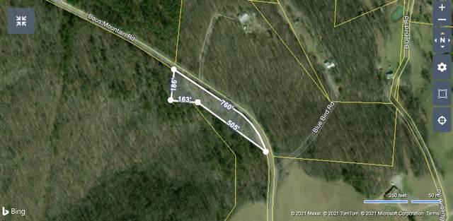 0 Daus Mountain Rd, Palmer, TN 37365 (MLS #1344577) :: Keller Williams Realty