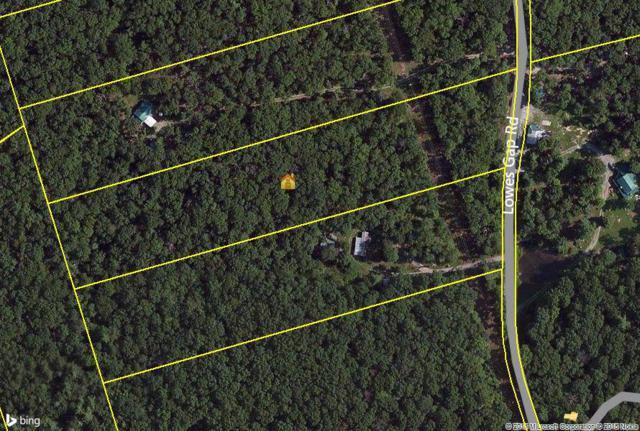 7b Lowes Gap Rd #7B, Spring City, TN 37381 (MLS #1223621) :: The Robinson Team