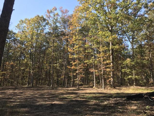 Lot 104 Lou Rd, Pikeville, TN 37367 (MLS #1228896) :: The Robinson Team