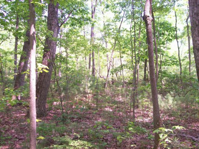 Lot 111 Lou Rd, Pikeville, TN 37367 (MLS #1228904) :: The Robinson Team