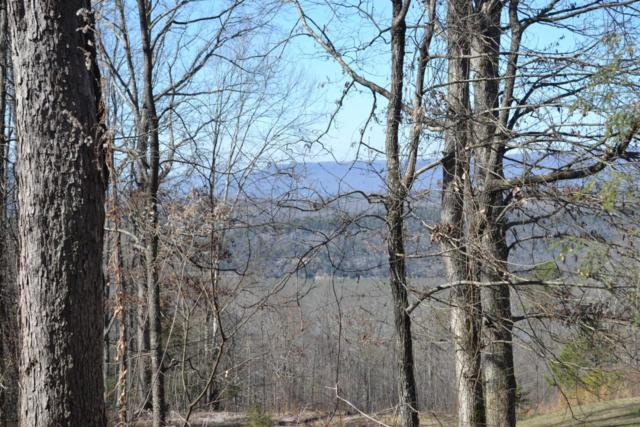 00 Bluffs Rd. S. #17, South Pittsburg, TN 37380 (MLS #1241203) :: Chattanooga Property Shop