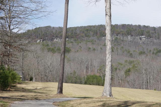 0 Golf Villa Dr, Dunlap, TN 37327 (MLS #1256378) :: The Robinson Team