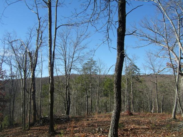 1265 Hobbstown Rd, Dunlap, TN 37327 (MLS #1258956) :: Chattanooga Property Shop