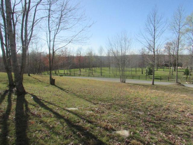 243 Roaring Creek Rd, Dunlap, TN 37327 (MLS #1261970) :: The Mark Hite Team