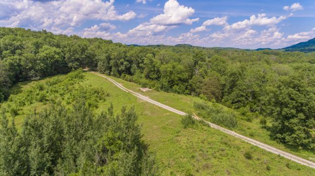 0 County Rd #503, Athens, TN 37303 (MLS #1265248) :: Keller Williams Realty | Barry and Diane Evans - The Evans Group