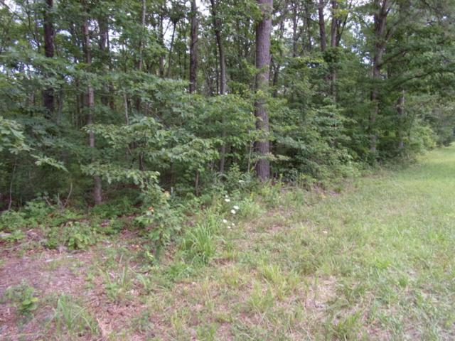 0 Jason Rd #118, Pikeville, TN 37367 (MLS #1267281) :: Chattanooga Property Shop