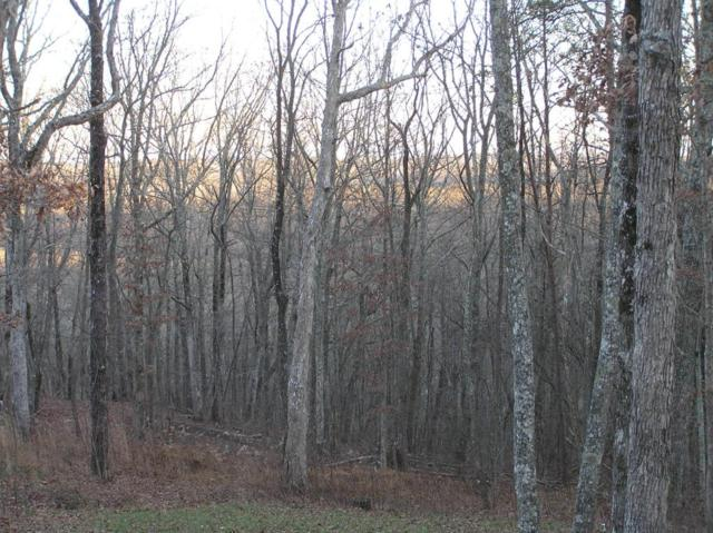330 Evening Shade Lane, Graysville, TN 30726 (MLS #1268658) :: Chattanooga Property Shop