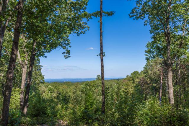 0 Lookout Crest Ln #3, Lookout Mountain, GA 30750 (MLS #1272754) :: Chattanooga Property Shop