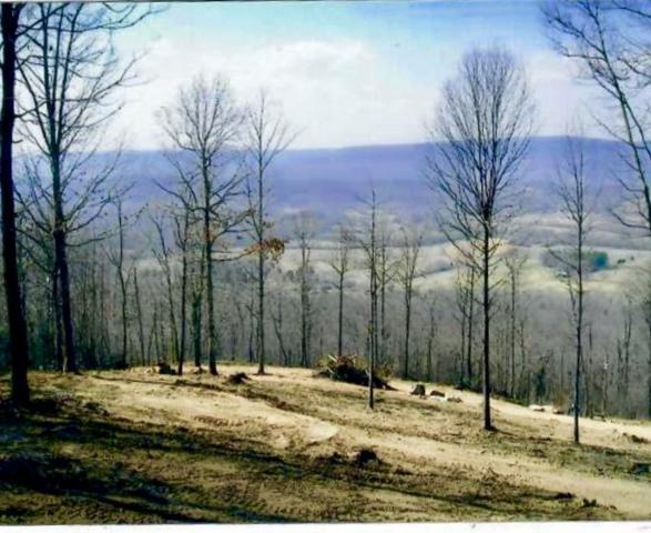 690 Ditch Gap Rd, Whitwell, TN 37397 (MLS #1273366) :: Chattanooga Property Shop