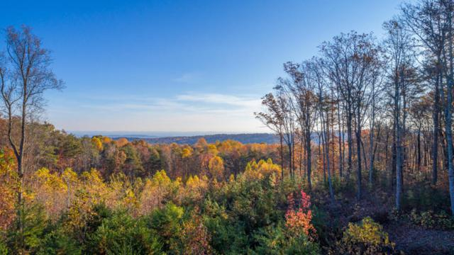0 Lookout Crest Ln #22, Lookout Mountain, GA 30750 (MLS #1273924) :: Chattanooga Property Shop