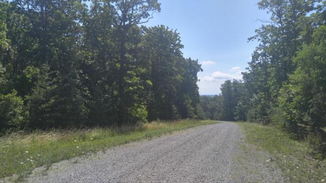 0 Forest View Ln Lot 25, Dunlap, TN 37327 (MLS #1275797) :: The Robinson Team