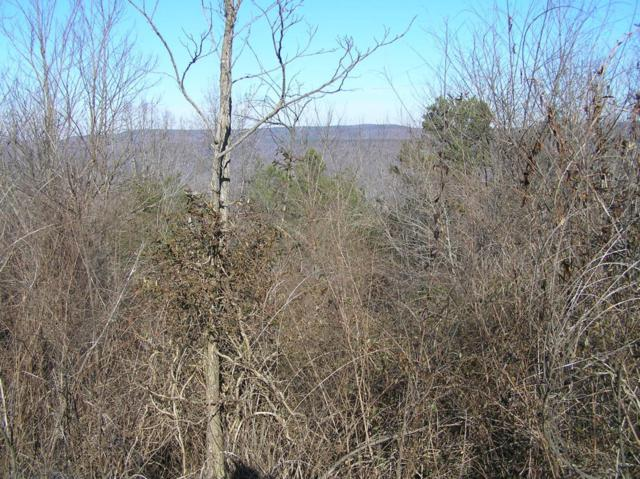 1000 Megans Way, South Pittsburg, TN 37380 (MLS #1276224) :: Chattanooga Property Shop