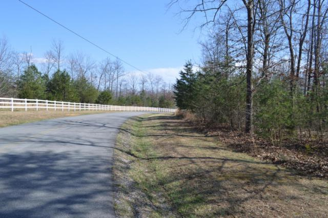 340 Bluff View Dr, Dunlap, TN 37327 (MLS #1277994) :: Chattanooga Property Shop