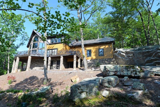 920 Rushing Water Tr, Rising Fawn, GA 30738 (MLS #1278298) :: Chattanooga Property Shop