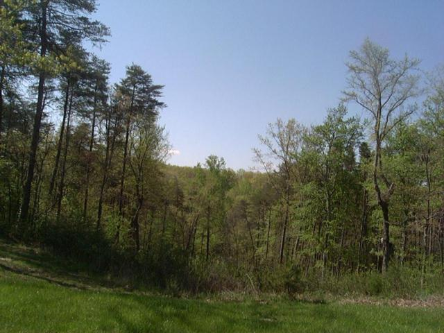 0 High Meadows Dr Lot 22, Spencer, TN 38585 (MLS #1278527) :: The Robinson Team