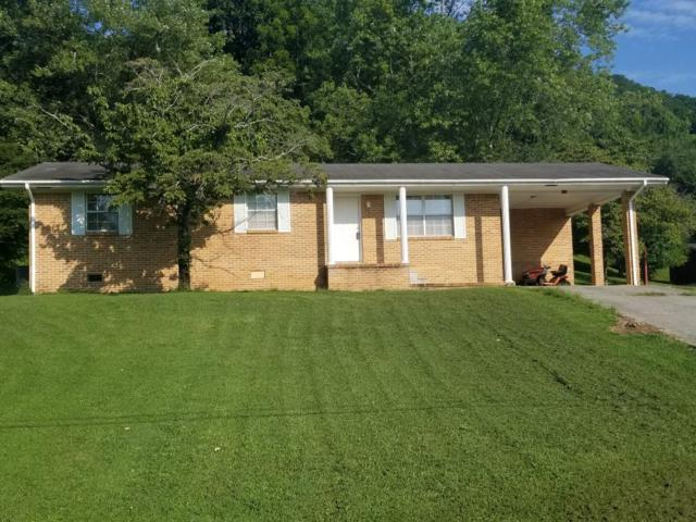 132 Walnut St, Spring City, TN 37381 (MLS #1278694) :: Chattanooga Property Shop