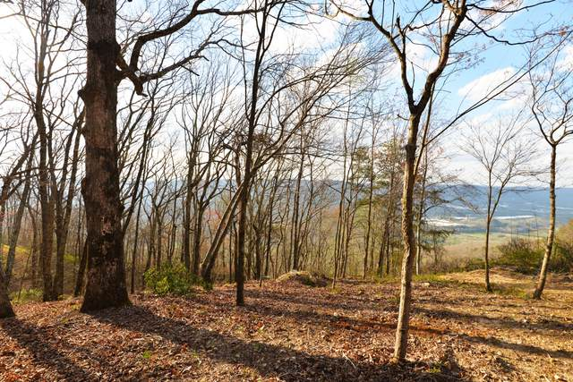 112 Maggie Bluff Cir Lot 2, Lookout Mountain, GA 30750 (MLS #1279203) :: The Jooma Team