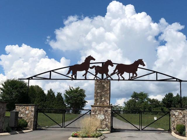 77 Thunder Ridge Dr Lot 77, South Pittsburg, TN 37380 (MLS #1279503) :: Chattanooga Property Shop