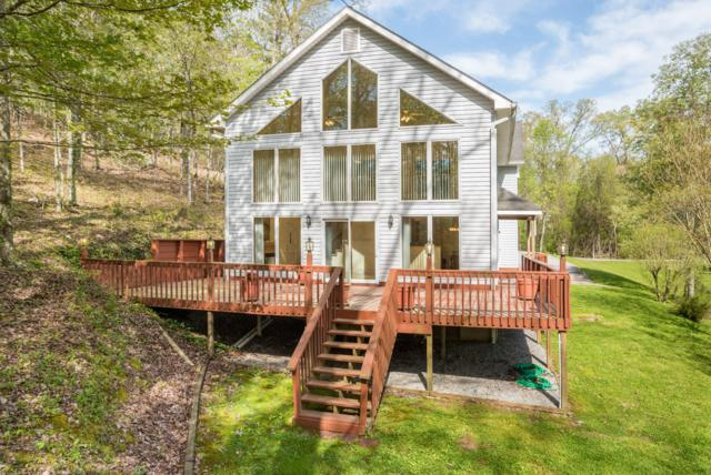 1188 Lake Forest Dr, Spring City, TN 37381 (MLS #1280020) :: Austin Sizemore Team