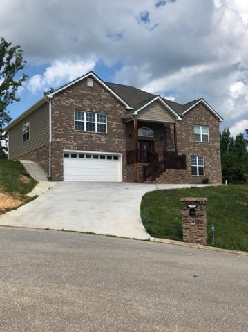 119 Nicole Dr, Dayton, TN 37321 (MLS #1283383) :: Keller Williams Realty | Barry and Diane Evans - The Evans Group