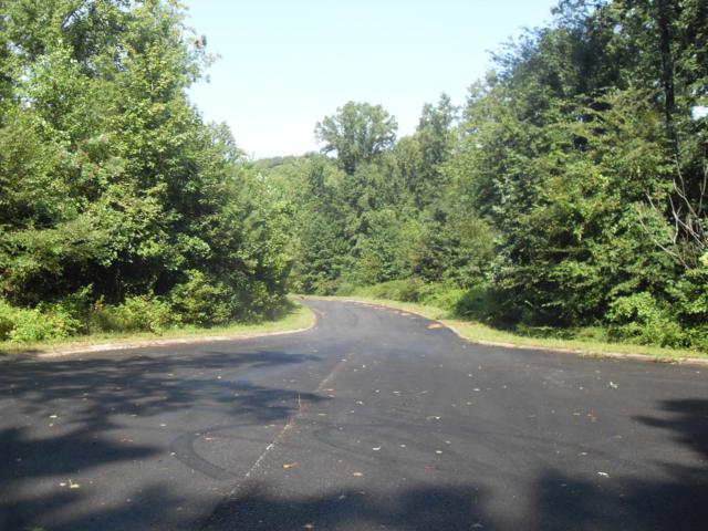 017 Loblolly Ln #17, Tunnel Hill, GA 30755 (MLS #1286334) :: Chattanooga Property Shop