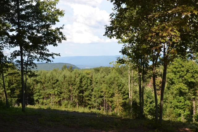 0 Lookout View Dr #169, Jasper, TN 37347 (MLS #1287499) :: Chattanooga Property Shop