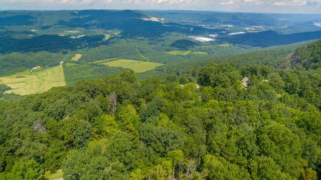 Lot 6 Maggie, Lookout Mountain, GA 30750 (MLS #1287903) :: EXIT Realty Scenic Group