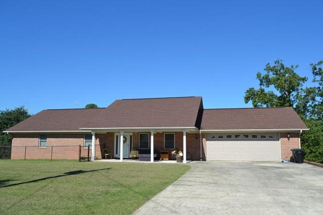 228 Scenic Hill Dr, Spring City, TN 37381 (MLS #1288301) :: Chattanooga Property Shop