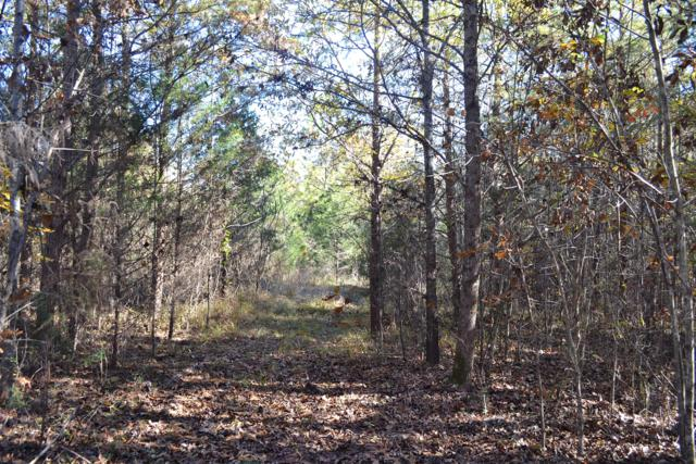 Lot 21 Bancroft, Mcdonald, TN 37353 (MLS #1289015) :: The Mark Hite Team