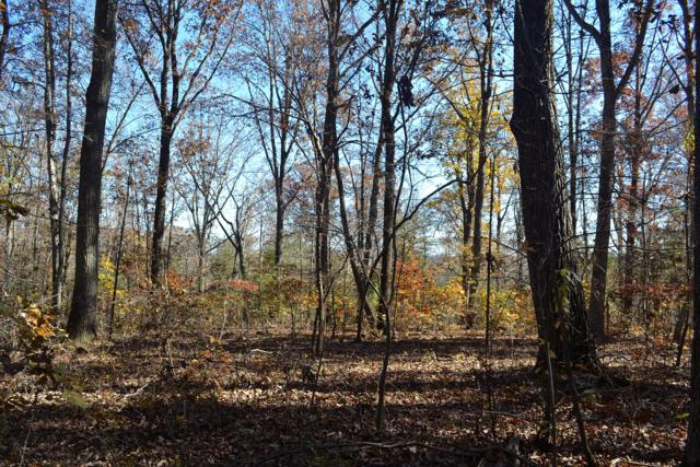 Lot 20 Bancroft Rd., Mcdonald, TN 37353 (MLS #1289022) :: The Mark Hite Team